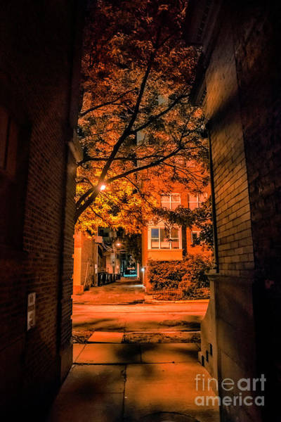Wall Art - Photograph - Mysterious Chicago Gangway by Bruno Passigatti