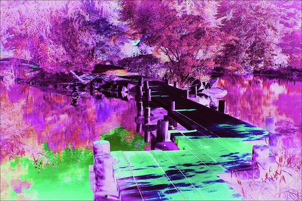 Wall Art - Photograph - Mysterious Garden #2 by Slawek Aniol