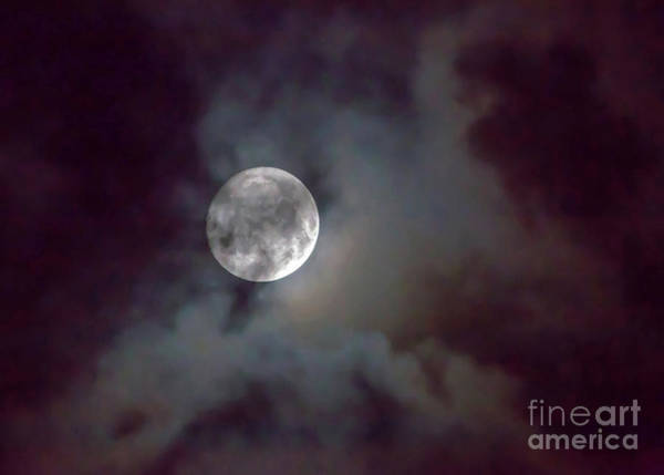 Photograph - Mysterious Moon by Kevin McCarthy