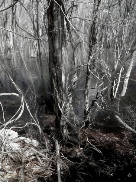 Photograph - Mystery Among The Vines by Wayne King