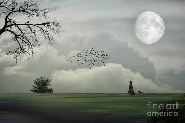 Cloak Digital Art - Mystery In The Country by Tom York Images