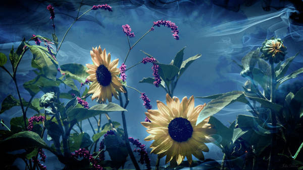 Photograph - Mystic Garden by John Rivera