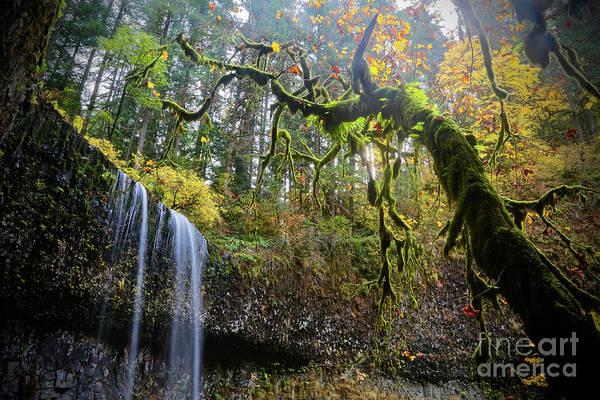 Wall Art - Photograph - Mystical Falls 2 by American School