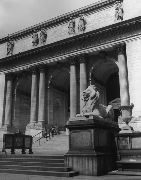 Lion Statue Photograph - N Y P L Gray by Dick Smith