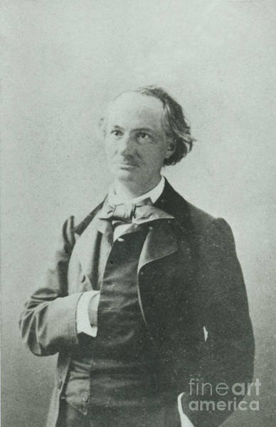 Wall Art - Photograph - Nadar Portrait Of Charles Baudelaire by Nadar