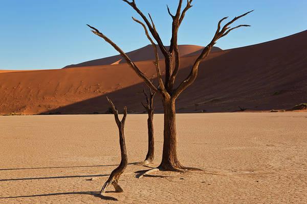 Environmental Issue Wall Art - Photograph - Namib Naukluft National Park, Namibia by Peter Adams
