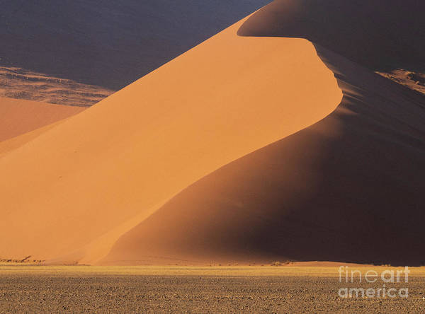 Wall Art - Photograph - Namibia Curves Of Sand by Mike Reid