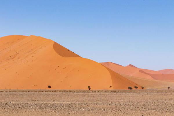 Photograph - Namibia Desert 3 by Mache Del Campo
