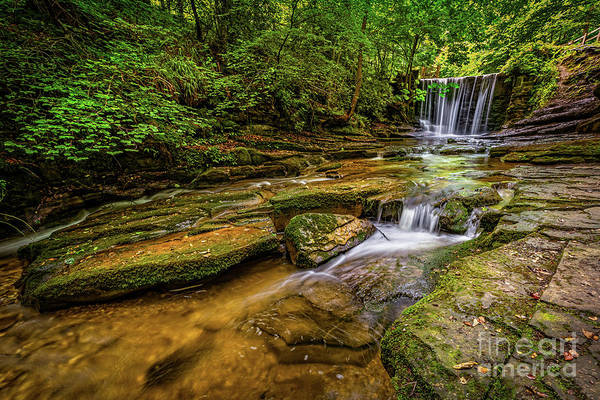 Wall Art - Photograph - Nant Mill Falls Wales by Adrian Evans