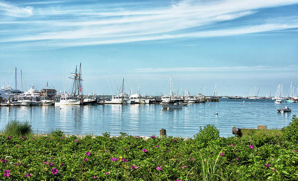 Wall Art - Photograph - Nantucket Harbor And Boat Basin - Massachusetts by Brendan Reals