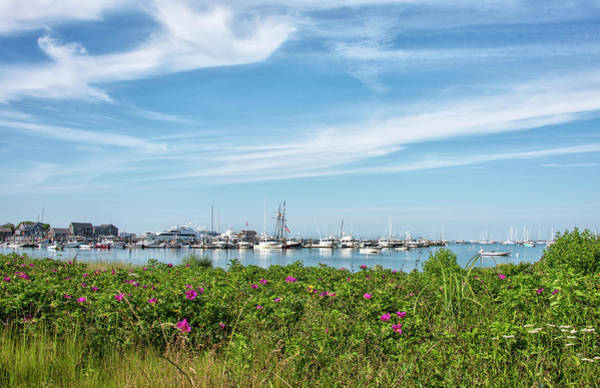 Wall Art - Photograph - Nantucket Harbor And Virginia Rose by Brendan Reals