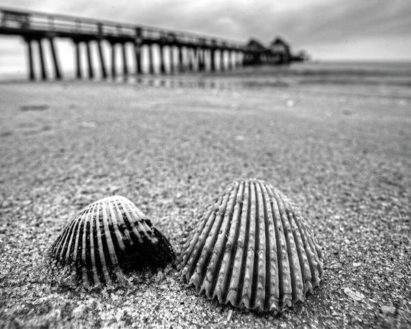 Photograph - Naples Pier Seashells Naples Fl Florida Black And White by Toby McGuire
