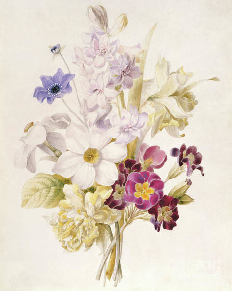 Wall Art - Painting - Narcissus And Other Flowers, 1840 by French School