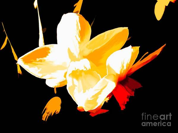 Mixed Media - Narcissus Art by Debra Lynch