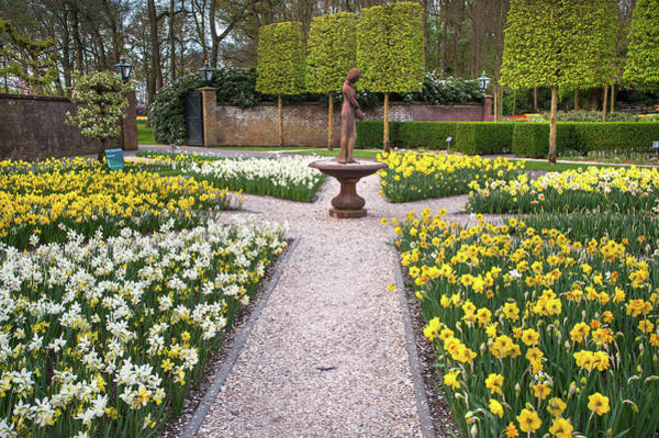 Photograph - Narcissus Flowerbeds With Sculpture In Keukenhof by Jenny Rainbow