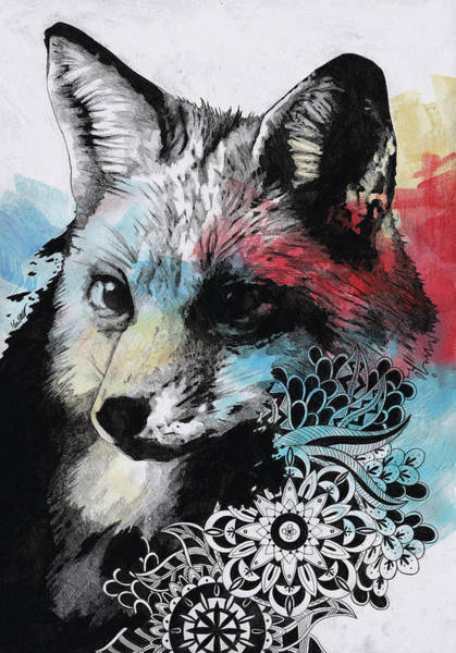 Pet Portrait Drawing - Nasty Nasty - Street Art Mandala Fox Portrait by Marco Paludet