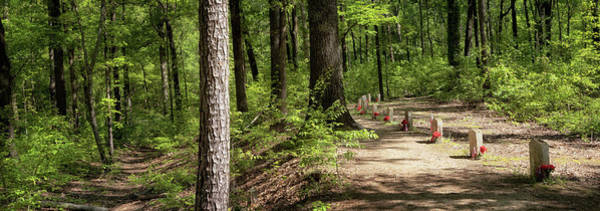 Photograph - Natchez Trace - 13 Graves Panorama by Susan Rissi Tregoning