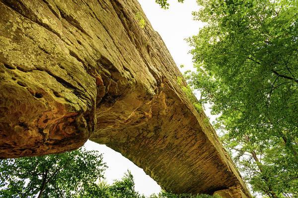 Photograph - Natural Bridge 4 by Michael Scott