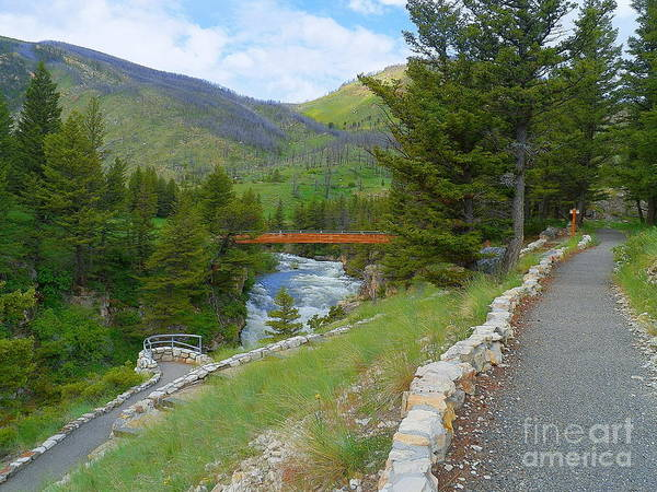 Wall Art - Photograph - Natural Bridge Falls Boulder River Montana by Art Sandi