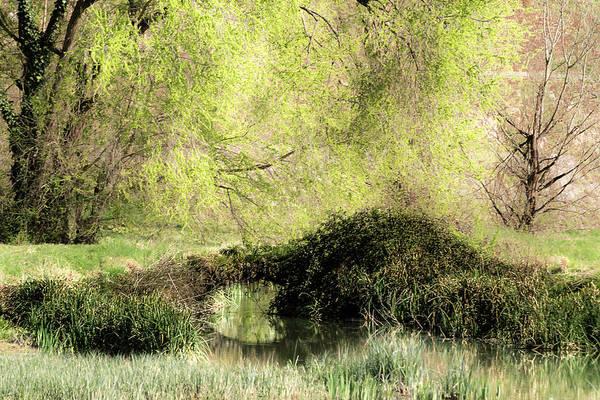 Photograph - Natural Bridge by Wolfgang Stocker