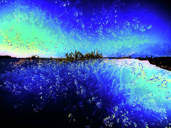 Photograph - Nature Art 12 by Jorg Becker
