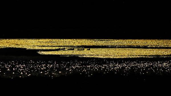 Photograph - Golden Lake by Jorg Becker
