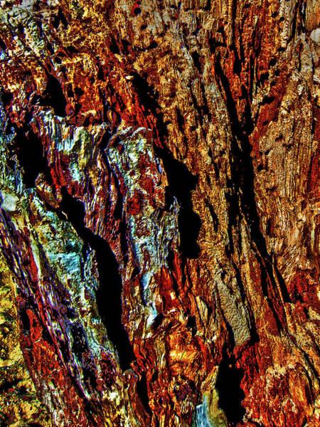 Photograph - Nature Art 38 by Jorg Becker