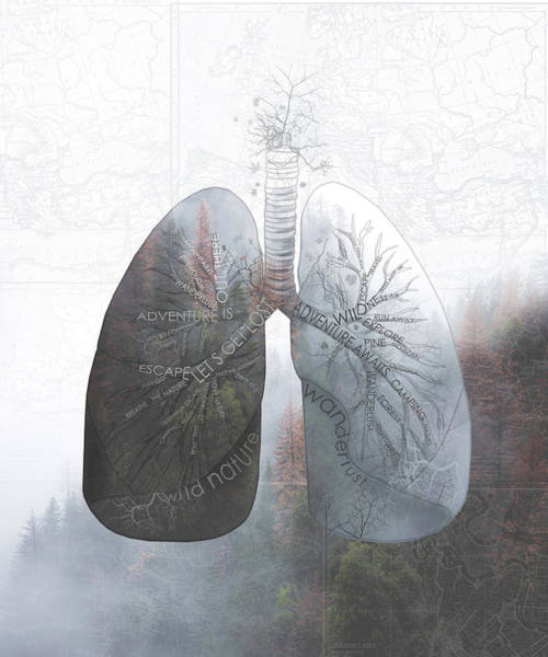 Lung Digital Art - Nature Breath by Bekim Art