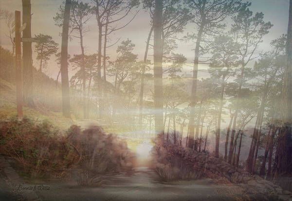 Digital Art - Nature In Early Morning by Bonnie Willis