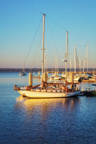 Photograph - Nautical Blues And Gold II by Debra and Dave Vanderlaan