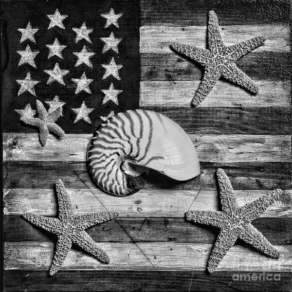 Wall Art - Photograph - Nautilus And Starfish On American Flag Square Format Black And White by Paul Ward