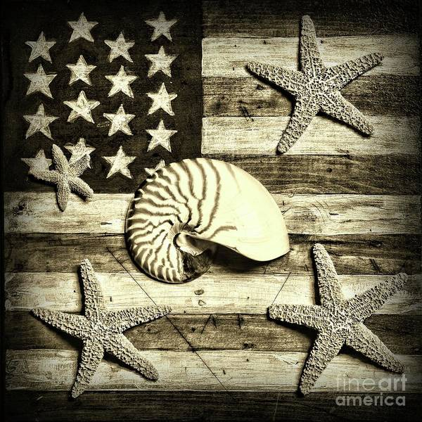 Wall Art - Photograph - Nautilus And Starfish On American Flag Square Format Sepia by Paul Ward