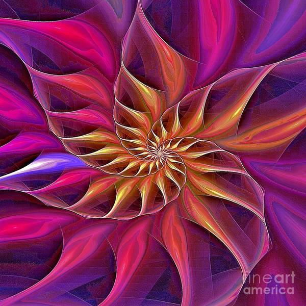 Digital Art - Nautilus Enameled Versicolor by Doug Morgan