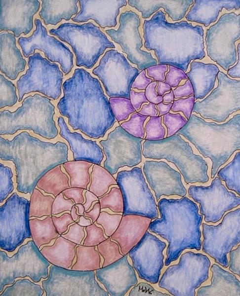 Wall Art - Drawing - Nautilus Mosaic by Megan Walsh