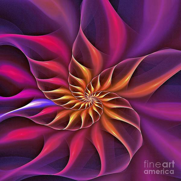 Digital Art - Nautilus Versicolor by Doug Morgan
