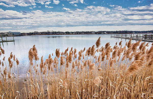 Photograph - Navesink River Morning In Red Bank by Gary Slawsky