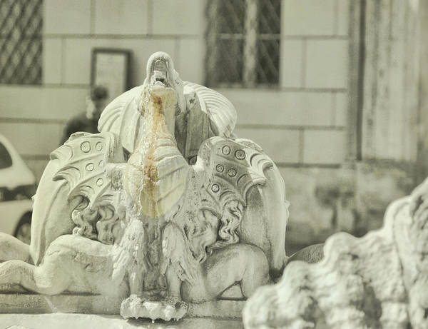 Photograph - Navona Dragon by JAMART Photography