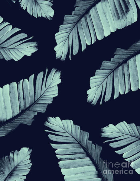 Banana Leaf Mixed Media - Navy Blue Banana Leaves Dream #2 #tropical #decor #art by Anitas and Bellas Art
