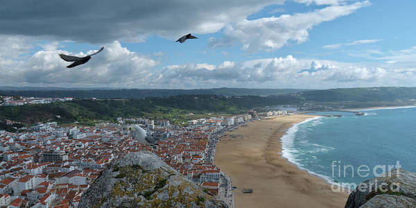 Photograph - Nazare And Bird Flight by Angelo DeVal