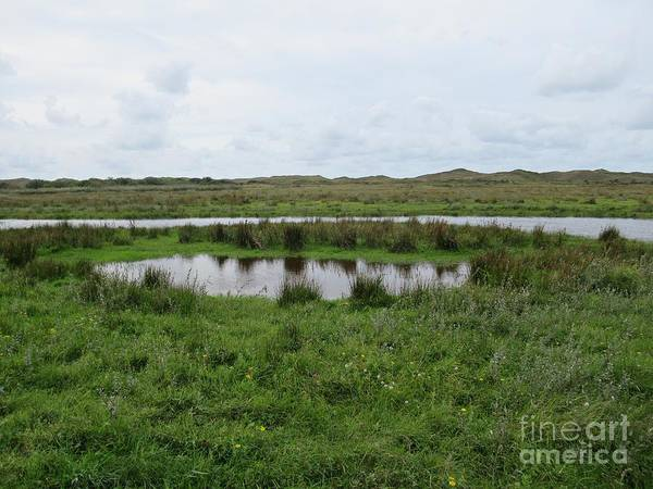 Near De Muy On Texel Art Print