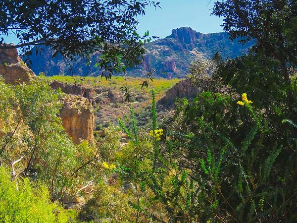 Photograph - Near Picketpost Mountain In Arizona by Judy Kennedy