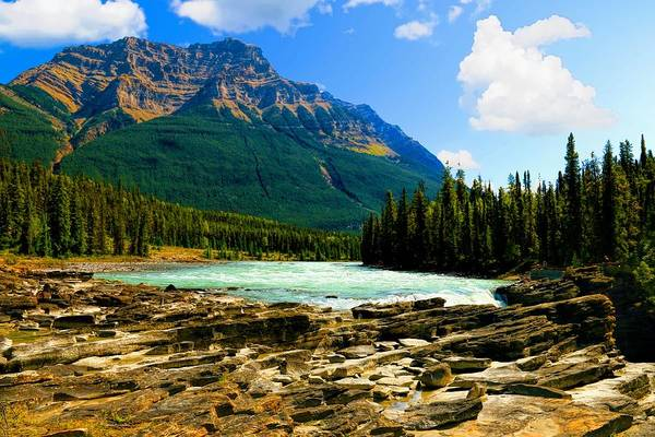 Photograph - Near The Athabasca Falls Jasper National Park, Alberta  by Ola Allen