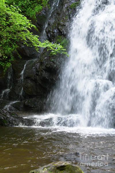 Digital Art - Near The Waterfall by Phil Perkins