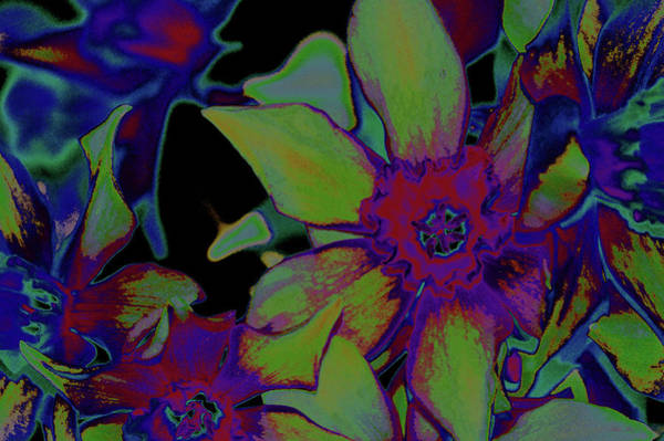 Mixed Media - Neon Daffodil Nbr 3 by Lesa Fine