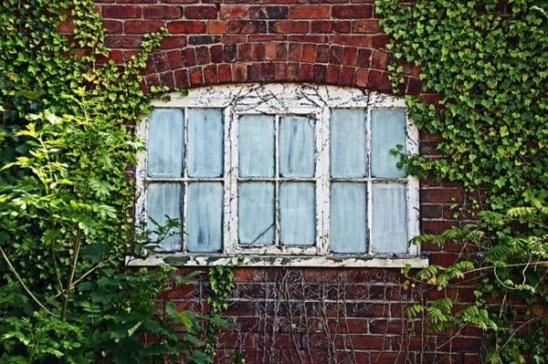 Photograph - Ness Gardens.  Window. by Lachlan Main