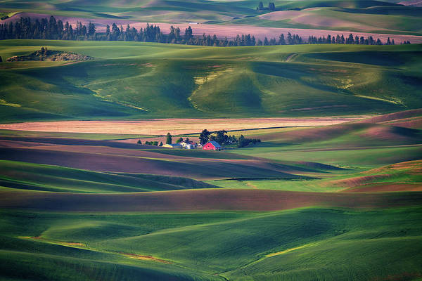Photograph - Nestled In The Hills by Rick Berk