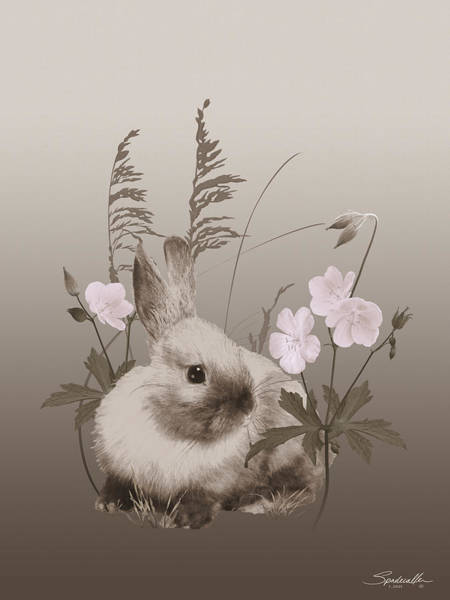 Wall Art - Digital Art - Nestling Bunny by Spadecaller