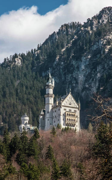 Neuschwanstein Castle On The Hill 2 Art Print