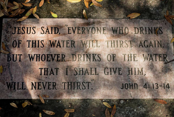 Photograph - Never Thirst - John 4 by Susie Weaver
