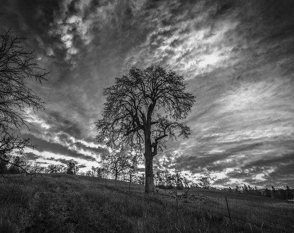 Photograph - New Day - Bw by Jonathan Hansen